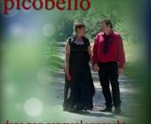 Duo Picobello kondigt met pijn in hart te stoppen met muziek